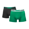 Puma PLACED LOGO Green-M